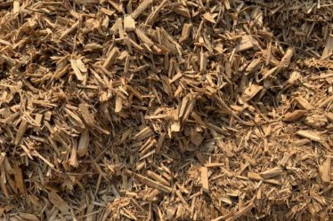 Soft Play Eucey Mulch