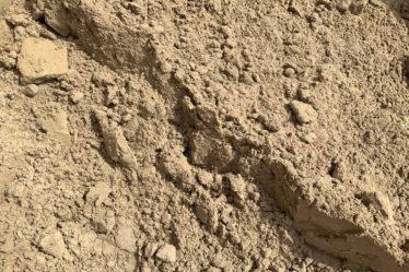 Tgs Brick Sand